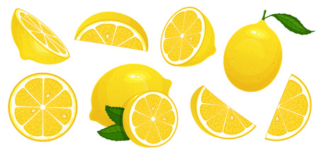 Lemon slices. Fresh citrus, half sliced lemons and chopped lemon. Cut lemons fruit slice and zest for lemonade juice or vitamin c. Isolated cartoon vector illustration icons set Çizim
