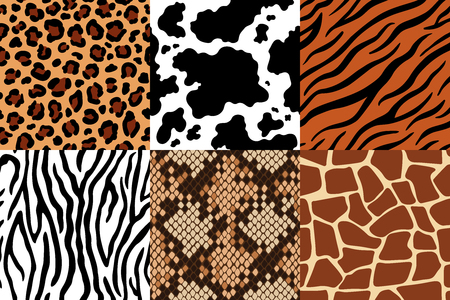 Modello di pelli di animali. Pelle leopardata, tessuto zebrato e pelle di tigre. Giraffa Safari, stampa mucca e modelli senza cuciture di serpente. Stampe di vestiti di moda, set di vettori di texture stampate in pelliccia di pelli di animali selvatici Vettoriali