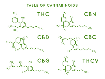 Cannabinoid structure. Cannabidiol molecular structures, THC and CBD formula. Marijuana or cannabis molecules, cannabidiol biochemistry medicinal structuring vector illustration Illustration