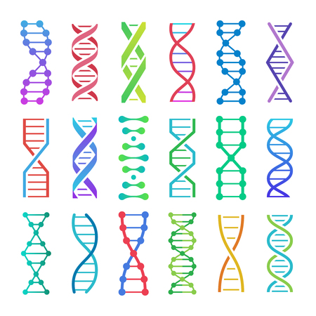Colorful DNA icon. ADN structure spiral, deoxyribonucleic acid medical research and human biology genetics code vector icons set