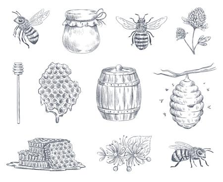 Gravure d'abeille. Abeilles à miel, ferme apicole et logotype d'encre vintage en nid d'abeille miel dessiné à la main. Cuillère ou pot à miel, ruche et insecte guêpe gravés. Ensemble de symboles isolés illustration vectorielle