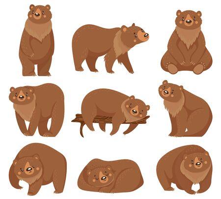Ours brun de dessin animé. Grizzly, animaux prédateurs de la forêt naturelle sauvage et ours assis. Prédateur brun à fourrure, la faune porte un mammifère. Jeu d'icônes d'illustration vectorielle isolé