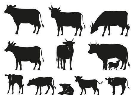 암소 실루엣입니다. 검은 소와 송아지 포유류 동물. 픽토그램. 농장 가축 소 픽토그램 또는 시골 국내 젖소, 송아지 및 황소. 격리 된 벡터 아이콘 세트
