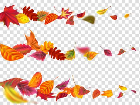 Flying autumn leaves. Fall leaf banner, yellow garden leafage fly. September and october foliage leaves fall swirl motion. Realistic isolated vector illustration set Banco de Imagens - 129434616