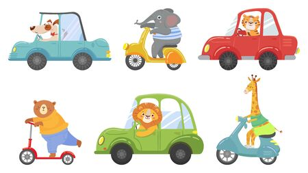 Cute animals on transport. Animal on scooter, driving car and zoo travel. Dog, elephant and tiger transportation vehicle drivers character. Cartoon isolated vector illustration icons set Banco de Imagens - 130568884