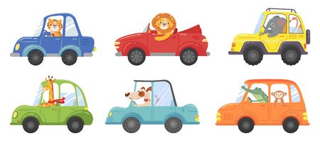 Cute animals in funny cars. Animal driver, pets vehicle and happy lion in car kid. Transportation animals or lion and dog character travel in cars. Isolated vector cartoon illustration icons set