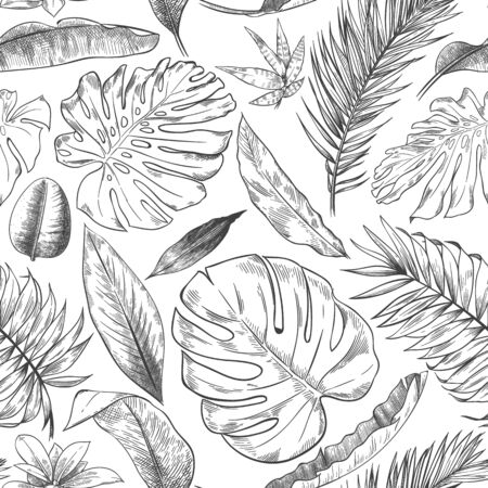 Hand drawn tropical leaves pattern. Sketch drawing palm branch, monstera leaf and exotic forest plants leaf seamless vector background illustration. Flora foliage rainforest, wildlife forest seamless