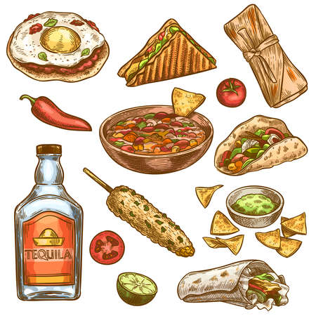 Traditional mexican food. Mexican national burrito, tacos and nachos, enchilada and chili pepper, tequila colored sketch vector set. Engraving vintage meal for menu design, spicy ingredients Ilustrace