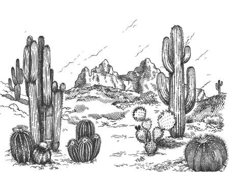 Desert landscape. Hand drawn mexican prairie with plants and blooming cactuses, prickly succulents nature wild west sketch vector background. Scenery with rock and mountain, environment