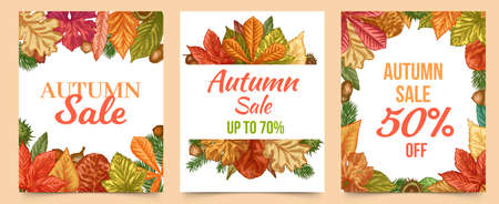 Autumn sale. Colorful fall leaves trendy design for flyers, retail coupons, season sale lettering discount banners set. Tree foliage as maple leaf, fir and acorn frame or border Illustration
