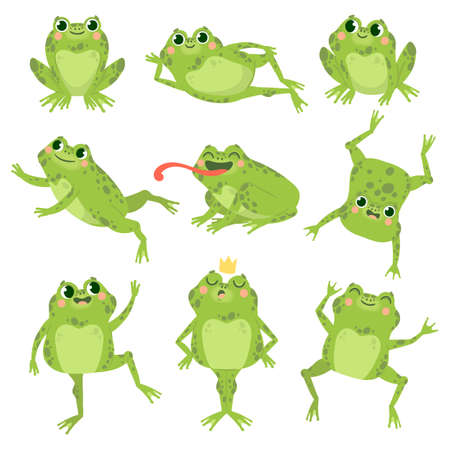 Cute frogs. Green funny frogs in various poses, happy animals group. Smiling active toads, zoo carnivore cartoon vector characters. Cartoon amphibian happy, animal princess toad illustration 矢量图像