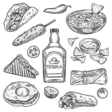 Mexican food. Sketch mexican national drink tequila and traditional food nachos, enchilada and burrito, tacos vintage isolated vector set. Sandwich, corn, tomato and lime for restaurant menu