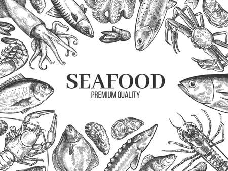 Sketch seafood. Hand drawn fresh fish, lobster, crab, oyster, mussel, squid and shrimps, vintage sketch restaurant menu vector background. Freshwater and ocean delicatessen, gastronomy concept