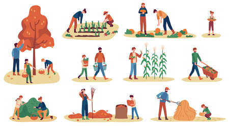Autumn gathering. Men, women and children collecting fruits, vegetables and berries. Stacking hay, working harvest season vector set. Illustration collecting harvest autumn, agriculture harvesting Ilustrace