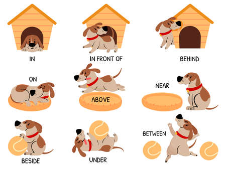 English prepositions with cute animal. Cartoon dog behind, above, near and under dog house, bowl. Learning words kids education vector set. Comic character with ball for learning visual material