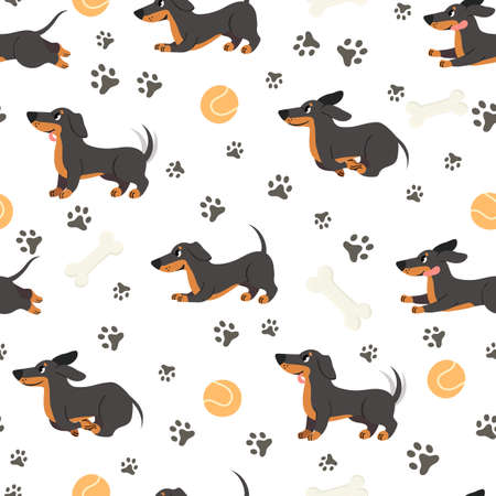 Dachshund seamless pattern. Adorable pets, funny dog long bodied breed, print for wrapping paper, textiles, wallpaper trendy vector texture. Adorable puppy jumping , ball toy and bone Stock fotó - 155570864