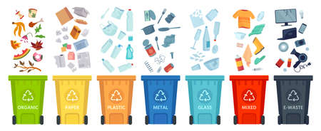 Waste segregation. Sorting garbage by material and type in colored trash cans. Separating and recycling garbage vector infographic. Garbage and trash, ecology rubbish recycling illustration