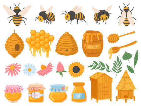 Beekeeping. Apiculture products various honey in glass jars. Honeycomb, beeswax, beehive, flowers and bees organic food vector set. Illustration honey and beekeeping, bee and sweet organic