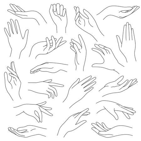 Female hands line. Outline elegant woman hand gestures. Beautiful palm and fingers icons in one line fashion minimalist style, vector set. Illustration hand collection woman, pretty elegant lady arm