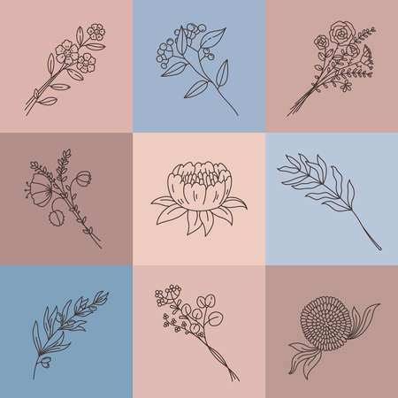 Minimalist line flowers. Simple poster with abstract meadow bouquet. Elegant outline flower, branch, herbs and lotus, plant vector set. Illustration drawing flower, minimalist beauty botanical leaf Stock Illustratie