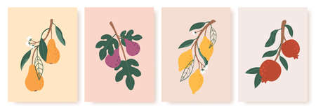 Abstract fruit poster. Modern prints with summer fruits, leaves and flowers. Lemon, pear and fig branches in minimalist art style vector set. Red pomegranate in pastel colors contemporary art