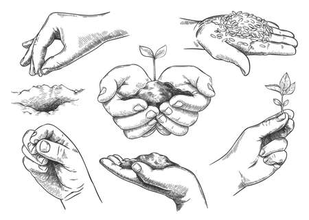Hands with plant sprout. Farmer hand holding soil and planting seeds. Save nature, grow new trees. Agriculture and ecology sketch vector set. Environmental protection symbols isolated Ilustrace