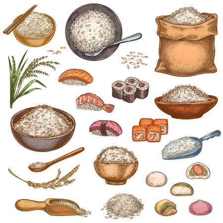 Rice food. Hand drawn asian dishes sushi rolls, mochi, porridge bowl and noodles. Bag and piles of rice grains. Japanese cuisine vector set. Healthy and organic products with fish or seafood