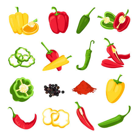 Pepper and paprika. Red, green and yellow sweet, hot and spicy peppers. Jalapeno, capsicum, cayenne and chili spice for sauce, vector set