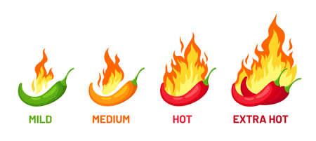 Spicy chili scale. Pepper with fire for spice strength levels mild, medium and extra hot for sauce or food labels and menu, vector set