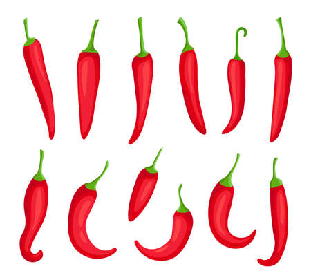 Chili peppers. Cartoon spicy hot red pepper. Cayenne and capsaicin spice ingredient for chilli sauce. Mexican pepper element vector set