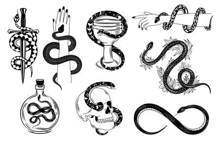 Snakes tattoo. Occult snake wrapped around hand, skull, dagger, bowl and poison. Serpent silhouette in flowers. Mystical tattoos vector set