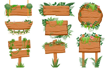 Jungle wooden signboards. Wood board with tropic leaves, moss and liana plants for game ui. Cartoon rainforest road signs on rope vector set Vector Illustration
