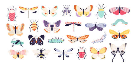Decorative insects. Doodle beetles, butterflies, dragonflies, bee, caterpillar and grasshopper. Vintage spring bug and worm, flat vector set