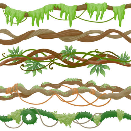 Seamless jungle vine on branch. Wild tropical tree with liana, leaves and moss. Green creeper plant stem. Cartoon rainforest vector pattern Vetores