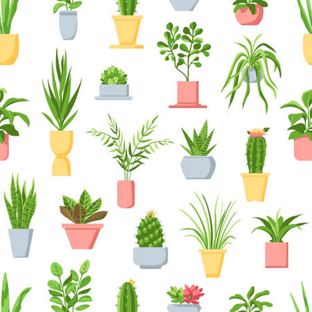 Pot plants seamless pattern. Houseplants, cactus and succulents, garden in pots home interior decor. Scandinavian style floral vector print