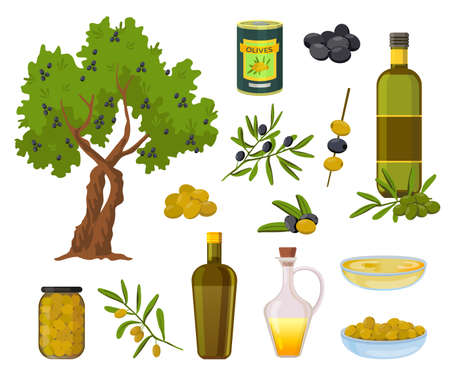 Cartoon olive products. Black and green olives in jars, healthy virgin oil in bottles and bowl. Olive tree and branch with leaves vector set