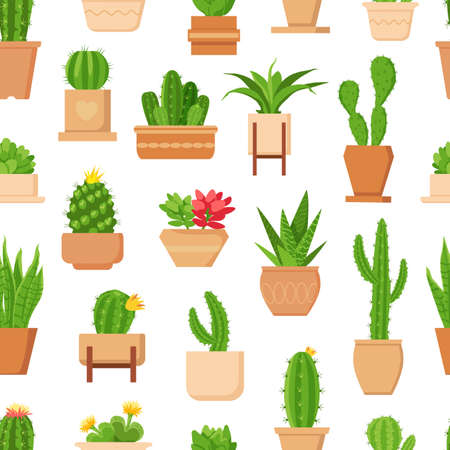 Cactus seamless pattern. Tropical plant, succulent and cute cacti with flower in pot. Trendy floral home plants decor vector wallpaper print