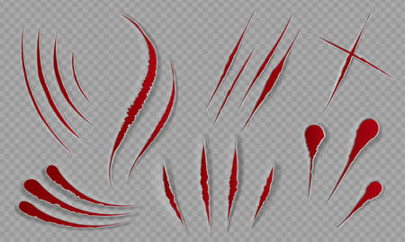 Blood scratches and cuts. Bloody scars and sharp slashes. Ripped wounds by animal paws. Halloween scary decor. Cat claws tracks vector set