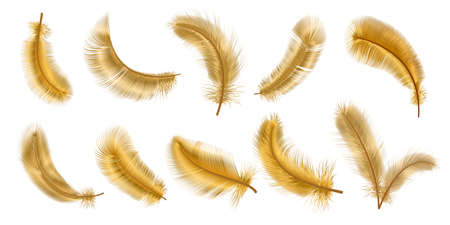 Realistic 3d fantasy bird fluffy golden feathers. Decorative gold glamour chic plume. Flying, falling and twirling soft feather vector set 向量圖像