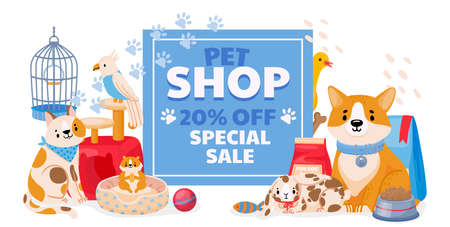 Pet shop sale banner with domestic animals, dog and cat. Zoo store flyer or discount coupon on accessories, toys and supplies vector concept