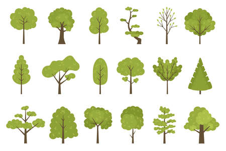 Flat forest trees icons, garden or park landscape elements. Cartoon simple summer tree trunk, leaves and branches. Nature trees vector set 向量圖像