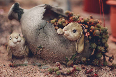 Postcard. Garden sculpture. Hares in a jug. Succulent.