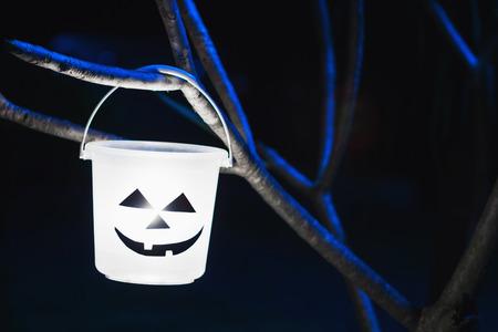 taffy: light in Halloween bucket on the tree bluedark tone