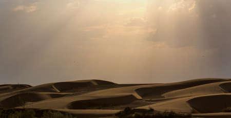 thar: Landscape at Thar Desert