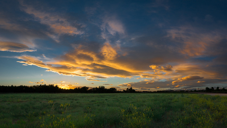 Vast rural landscape sunset panorama, with a field or meadow and tracks leading to the horizon and the colorful clouds.