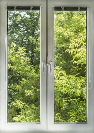 Closed white window overlooking green garden photo
