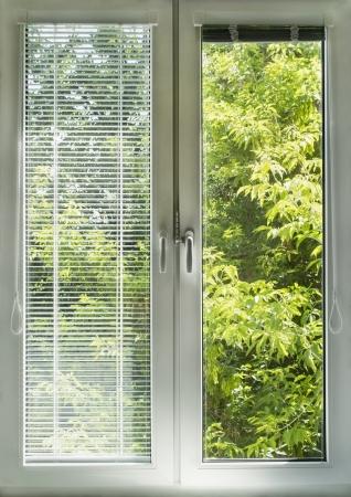 jalousie: Window with blinds overlooking green garden