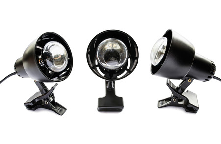 Group of three clip lamps on white background photo