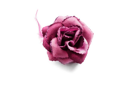 Pink velvet rose brooch isolated over white photo