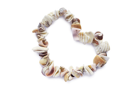 Bracelet made of seashells in the shape of a heart on white background photo